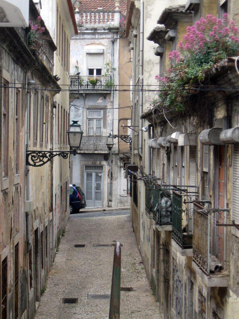 LisbonLane